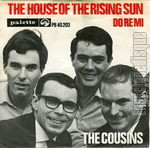 [Pochette de The house of the rising sun]