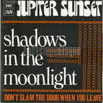 [Pochette de Shadows in the moonlight]