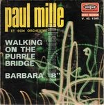 [Pochette de Walking on the purple bridge]